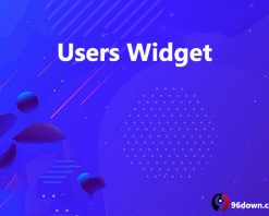 Users Widget