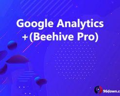 Google Analytics +(Beehive Pro)