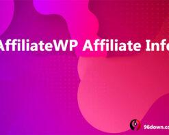 AffiliateWP Affiliate Info