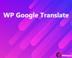 MyThemeShop WP Google Translate
