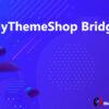 MyThemeShop Bridge