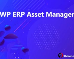 WP ERP Asset Manager