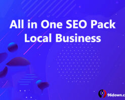 All in One SEO Local Business