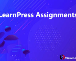 LearnPress Assignments